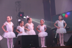 Show de Talentos 2017